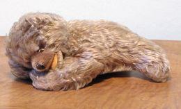 Peluche 122_steiff Ours Couché Floppy Zotty - Steiff Animals