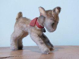 Peluche 129_chèvre Zicky, Ziege, Goat, Geit_steiff - Steiff