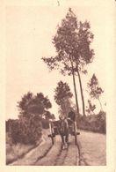 Karsterlee - CPA - Thielen - Vers Le Moulin - Kasterlee