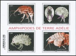 FRENCH ANTARCTIC TAAF FSAT 2017 Amphipodes Marine Life Animals Fauna MNH - Nuevos