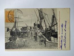 TURCHIA Türkiye ISTANBUL COSTANTINOPLE Fisherman Ship Balayeur Dustman Dog AK Old Postcard - Turchia