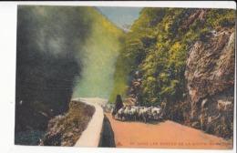 Algérie - Dans Les Gorges De La Chiffa  :    Achat Immédiat - Algeria
