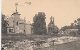 Lippeloo Lippelo , Kasteel Van Melis  ( Sint-Amands ) Albert , N° 6 - Sint-Amands