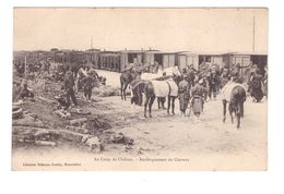 Train Chemins De Fer Gare Camp De Chalons Embarquement De Chevaux Soldat Wagon Militaire Militaria - Gares - Avec Trains