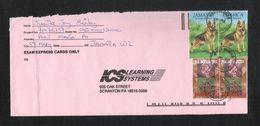 Jamaica Air Mail Postal Used Cover Jamaica To USA Dog Animal Flower Flower Plant - Jamaica (1962-...)
