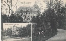 Moresnet ,Chateau De Surmondt,(Alensberg),ruine Schimper,la Geul ;(région Plombières - Moresnet -Henri-Chapelle-Kelmis) - Plombières