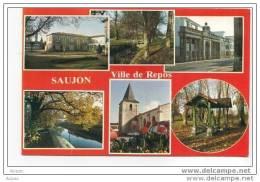 17 SAUJON Carte Multivue (cpsm) - Saujon