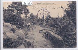 VERRIERES-LE-BUISSON- ROCHER DE PLANTES ALPINES DANS LE PARC - Verrieres Le Buisson