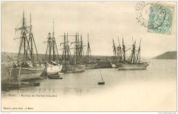 22 BINIC. Rentrée Des Navires Islandais 1903 - Binic