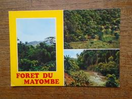 Congo , Forêt De Mayombe - Congo - Brazzaville