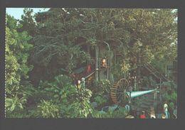 Disneyland - Treehouse At Disneyland - Anaheim