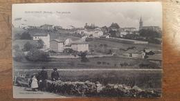 69 - CPA Animée BOIS-d'OINGT (Rhône) - Vue Générale (Enfants, âne) - Francia