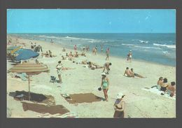 Clear Blue Water, Soft Sand And Lots Of Sunshine Beckon The Vacationists - Ed. Dexter Press, West Nyack - Animated Beach - NY - New York