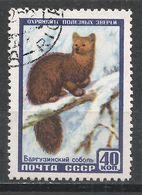 Russia 1957. Scott #1923 (U) Animal, Sable * - 1923-1991 URSS