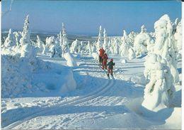 Finland Postcard Via Macedonia.Winter Sports - Winter Sports
