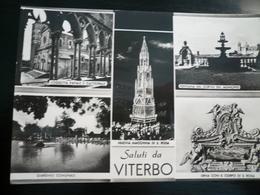 Viterbo Saluti 5 Vedute Usata 1962 - Viterbo