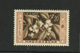 Madagascar ** N° 331 - Le Café    . - Madagascar (1889-1960)