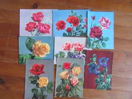 Lot De 8 Cartes De Fleurs  Rose Gentiane   Dimensions 21x15 - Postcards