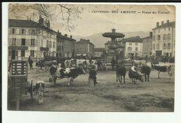 63 - Puy De Dome - Ambert - Place Du Foirail - Marché - Vaches  -Réf.111 - Ambert