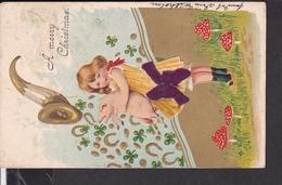 Postkarte Weihnachten , Glückschwein , Pilze 1904 - Autres