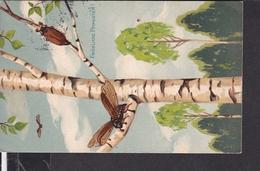 Postkarte Pfingsten Maikäfer 1907 - Pfingsten