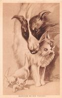 6488 01 CANE GATTI DOG CATS - Animaux & Faune
