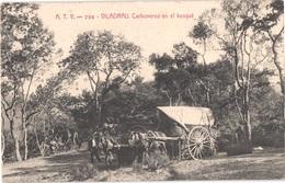 ES VILADRAU - ATV 796 - Carboneros - Les Charbonniers - Attelages - Animée - Belle - Gerona