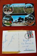 (FG.D39) RAVENNA - PUNTA MARINA TERME - CAMPING ADRIANO (CAMPEGGIO) - Ravenna