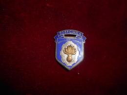INSIGNE 303 CMRA FAB DP NICE ROMAINVILLE - Armée De Terre