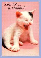Carte Moderne - Images De Celine Carterie - Chats - UM 2006. Petits Félins - Sans Toi Â… Je Craque - Chats