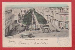 Cuba  -  Habana  -  The Prado Avenue - Postcards
