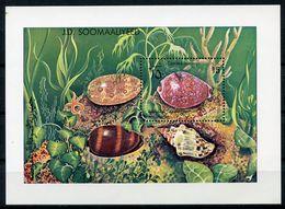 Somalia, 1984, Shells, MNH, Michel Block 14 - Somalie (1960-...)