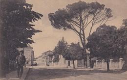 CARTOLINA - POSTCARD - UDINE - VIA CUSSIGNACCO - Udine