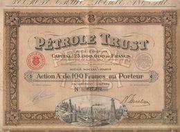 Action De 100 Francs Au Porteur Entièrement Libérée N°027232 Pétrole Trust De 1924 - Acciones & Títulos