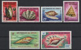 Côte Française Des Somalis, 1962, Shells, Molusses, MNH, Michel 343-348 - French Somali Coast - Costa Francese Dei Somali (1894-1967)