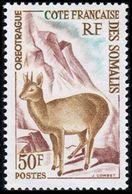 Côte Française Des Somalis, 1962, Buck, Oreotrague, MNH, Michel 341 - French Somali Coast - French Somali Coast (1894-1967)