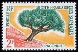 Côte Française Des Somalis, 1962, Tree, MNH, Michel 336 - French Somali Coast - French Somali Coast (1894-1967)