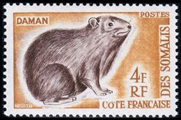 Côte Française Des Somalis, 1962, Animal, Daman, MNH, Michel 337 - French Somali Coast - Côte Française Des Somalis (1894-1967)