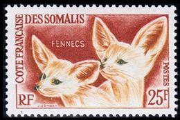 Côte Française Des Somalis, 1962, Fox, Fennec, MNH, Michel 339 - French Somali Coast - Côte Française Des Somalis (1894-1967)