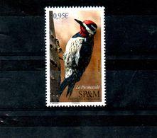 SPM, 2018,  BIRD- WOODPEKER, 1v.MNH** - Oiseaux