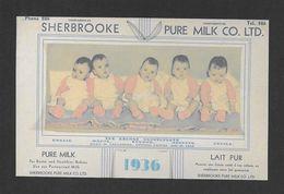 ENFANTS - LES JUMELLES DIONNE - BORN IN CALLANDER ONTARIO EN 1934 - CALENDRIER PAR SHERBROOKE PURE MILK - Groupes D'enfants & Familles
