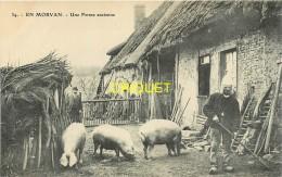 Dépt. 71, En Morvan, Une Ferme Ancienne, Homme Avec Une Bêche Au 1er Plan, Cochons.... - France