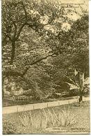 CPA - Carte Postale - France - Besançon Les Bains - Promenade Micaud (CPV555) - Besancon