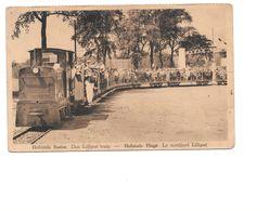Hofstade Baden, Den Liliput Trein - Hofstade Plage, Le Tortillard Liliput, Oude Trein - Zemst