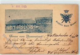51894813 - Bienenstand Kathsam Kalte Bienen - Cultures