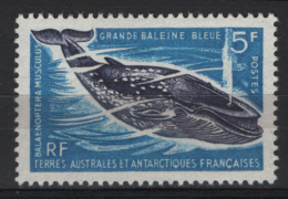 T.A.A.F. 1966 Y.T. 22 **/MNH VF - Terre Australi E Antartiche Francesi (TAAF)