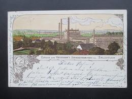AK Litho 1905 Gruss Von Hoffman's Stärkefabriken Salzuflen. Künstler AK. Stempel Seelow - Gruss Aus.../ Grüsse Aus...