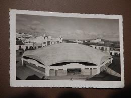 RARE - ALGECIRAS - MERCADO DE ABASTOS - - HALLE - MARKET PLACE - TIMBREE 1956 - R13504 - Autres