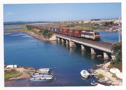 11 Port La Nouvelle N°168 Train Loco SNCF BB 26212 Train De Containers Pour L'Espagne étang De Bages Et Sigean En 2007 - Port La Nouvelle