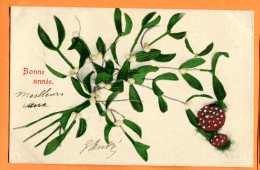 HB525, Bonne Année, Gui, Champignon, Mushrom, Précurseur, AWS 316 Nr. 3, Circulée 1905 - Anno Nuovo